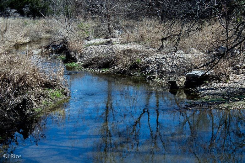 Creek by the trail